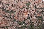 File:Bortigiadas, Viddalba - Monte Ruiu (10).JPG