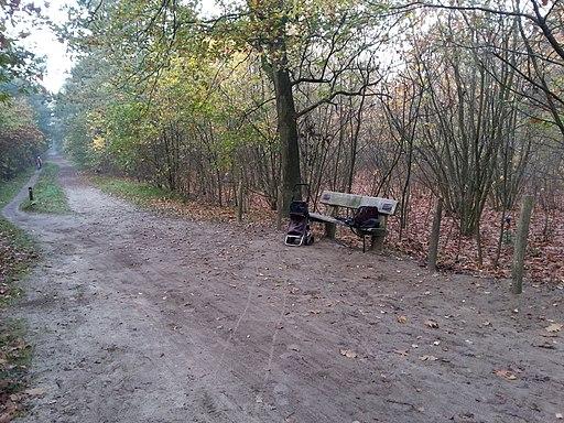 Boswachterij Dorst NB november 2017