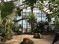 Botanische tuinen Utrecht 45.jpg