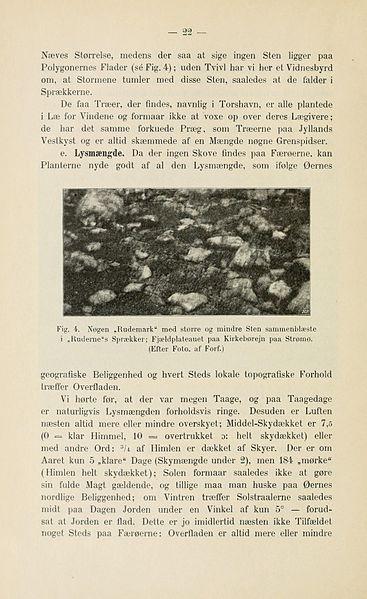 File:Botanisk tidsskrift (Page 22) BHL5148957.jpg