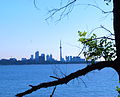 Branch Toronto skyline.jpg