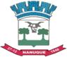 Brasão Nanuque MG.png