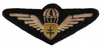 24th Airborne Division (France) - Image: Brevet parachutiste FFL