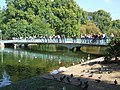 Bridge over the lake , St James's Park - geograph.org.uk - 1510766.jpg