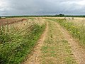 Bridleway - Cycle Route - Long Distance Footpath - geograph.org.uk - 1388354.jpg