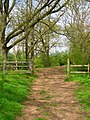 Bridleway to Okehurst Lane - geograph.org.uk - 779081.jpg