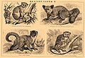 Brockhaus and Efron Encyclopedic Dictionary b47 385-2.jpg