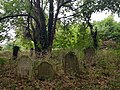 Brockley & Ladywell Cemeteries 20170905 110729 (47585444852).jpg