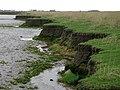 Broomfleet Island - geograph.org.uk - 584771.jpg