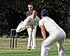 Buckhurst Hill CC v Dodgers CC at Buckhurst Hill, Essex, England 2.jpg