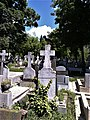 Bucuresti, Romania. Cimitirul Bellu Catolic. Cioara pe cruce.jpg