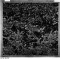 Bundesarchiv Bild 196-05061, Kauffung.jpg