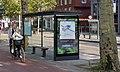 Bushokjes met sedumdaken, Utrecht (48608992392).jpg
