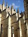 Buttresses, Exeter Cathedral - geograph.org.uk - 654755.jpg