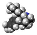 Butyltolylquinuclidine molecule spacefill.png