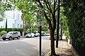 CARTA bus stop, Rutledge Ave.jpg