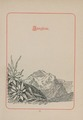 CH-NB-200 Schweizer Bilder-nbdig-18634-page059.tif