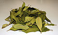 CSIRO ScienceImage 3022 Dried Lemon Myrtle Leaves Backhousia citriodora.jpg