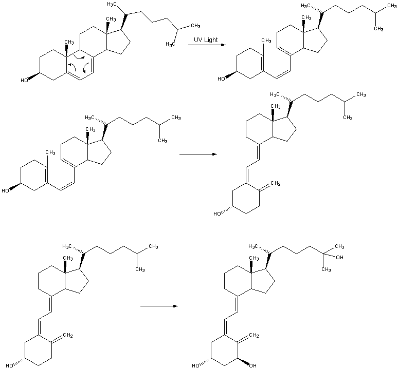 Calcitriol-Synthesis