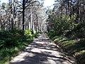 Camino Primitivo, A Fontaneira 02.jpg