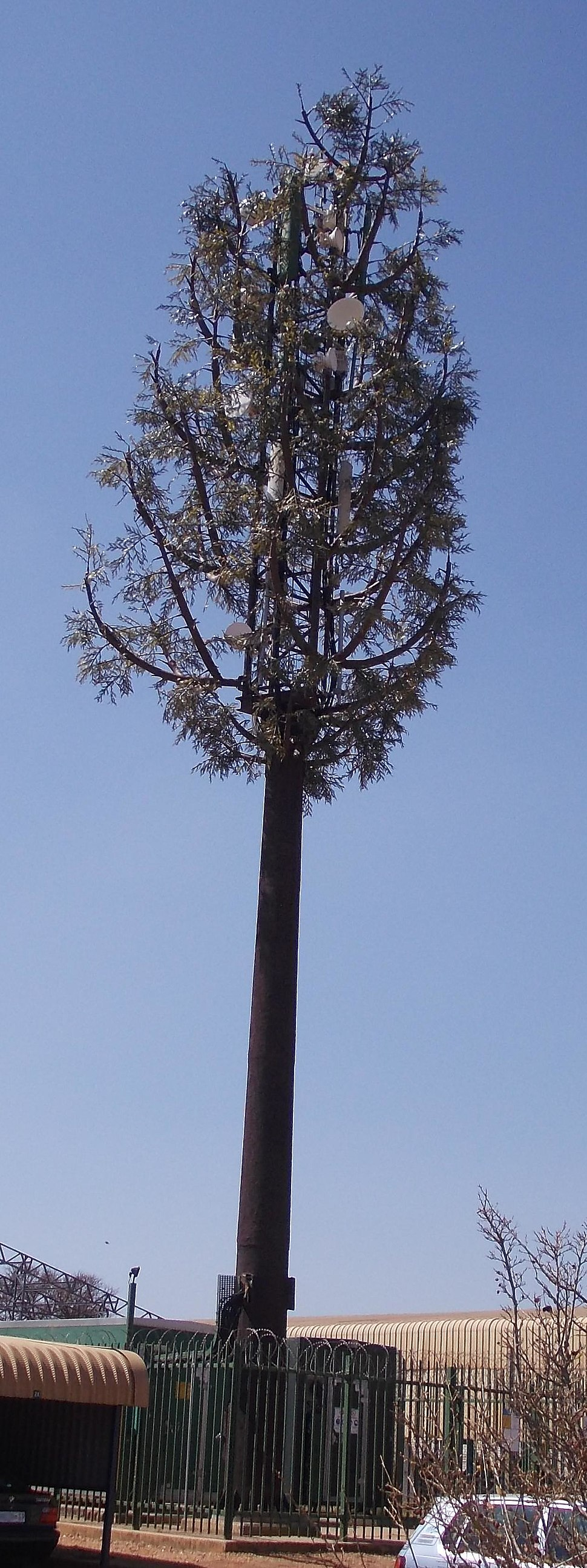 Camouflaged Microwave Cell Telephone Tower
