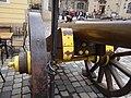 Cannons in Saxony (675).jpg
