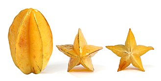Carambola - Vertical, end view, and cross section of the ripe carambola