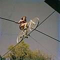 Carla Wallenda, of the Flying Wallendas daredevil circus act, shown during practice in Sarasota.jpg