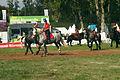Carroussel à 16 chevaux montés Mondial du percheron 2011 Cl J Weber03 (23456727353).jpg