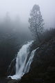 Cascade in the Fog.JPG
