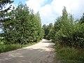 Ceļš pie Andrupenes, Andrupenes pagasts, Dagdas novads, Latvia - panoramio - M.Strīķis.jpg