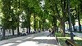 Center, Odessa, Odessa Oblast, Ukraine - panoramio - Дмитрий Ванькевич (105).jpg