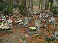 Central Cemetery in Szczecin 19.JPG