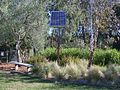 Ceres-env-pk-reedbed-and-solar-cell.jpg