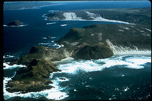 Channel Islands National Park CHIS1286.jpg
