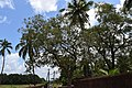 Chemmanthatta Mahadeva Temple DSC 0720.JPG