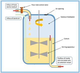 Chemostat bioreactor