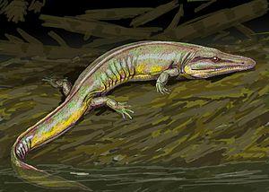 Edopoidea - Life restoration of the cochleosaurid Chenoprosopus milleri