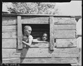 Children of miners playing in abandoned shack. Gilliam Coal and Coke Company, Gilliam Mine, Gilliam, McDowell County... - NARA - 540829.tif