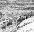 Chinese defences at Bac Ninh.jpg