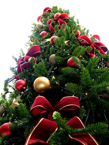 File:Christmas tree sxc hu.jpg