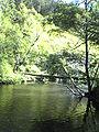 Cierny Vah River4.JPG