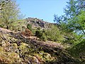 Cockrigg Crags - geograph.org.uk - 1282811.jpg