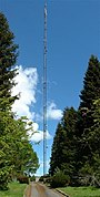 Communication Mast - geograph.org.uk - 11782.jpg