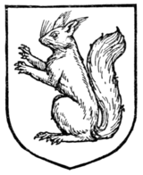 Fig. 407.—Squirrel.