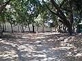 Comunidad San Antonio, San Salvador, El Salvador - panoramio.jpg