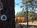 Continental Divide Trail, 2012 - panoramio (1).jpg