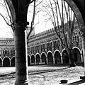 Cortile in nero bianco del Castello.jpg