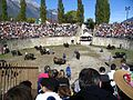 Cowfight8.jpg