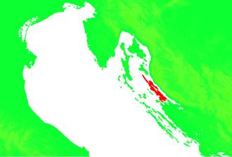 Pag (island) - Image: Croatia Pag